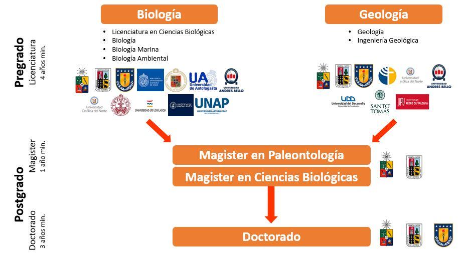 Cómo estudiar paleontología en Chile